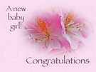 Congratulations New Baby Girl - Azaleas by MotherNature