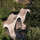 The three coves Shepherd's Bridge at entrance to Kipi Zagoria Greece by Ilan Cohen