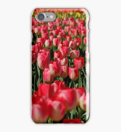 Tulip Field iPhone Case iPhone Case/Skin