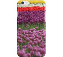 Colorful Tulip iPhone Case iPhone Case/Skin