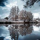 Infrared Lake by David Cooper