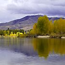Golden light on a grey day  by amontanaview
