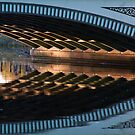 Albert Bridge by Alan McMorris