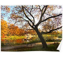 Autumn silhouette at Crotona Park, New York City  Poster