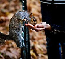 Feeding the Homeless by Patrick Metzdorf