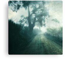 Along The Way  Canvas Print