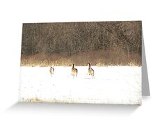 High tailing it out Greeting Card
