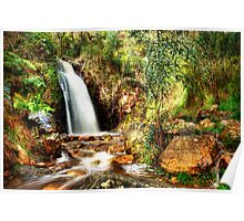 Waterfall Gully (Landscape) Poster
