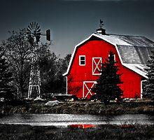 Vibrant Red Barn  by Marcia Rubin
