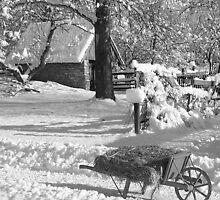 Winter Wheelbarrow B&W by purplefoxphoto