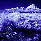 Mt Ngauruhoe, Infrared by Michael Treloar