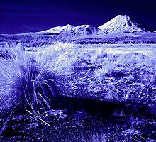 Mt Ngauruhoe, Infrared by Michael Treloar