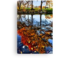 Boston, Fall Reflection  Canvas Print