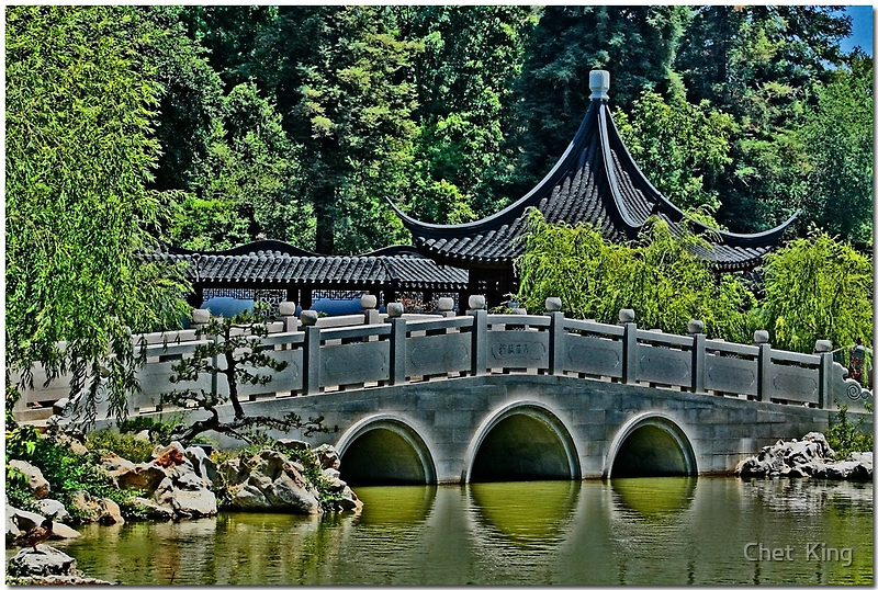 Chinese Garden by Chet  King