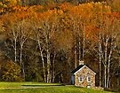 The little house by the woods by cclaude