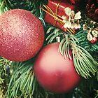 Retro Christmas by Lisa Blair