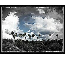 Sacred Grounds Photographic Print