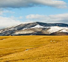 Beartown Mountain in Winter by Greg Booher