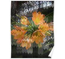 Flowers Missoni Poster