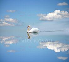 Swan in the Clouds by VigStudio