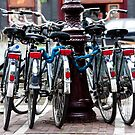 Dutch Bicycles by phil decocco