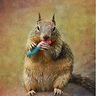 Squirrel iphone case by Lynn Starner