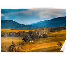Rural Tasmania Poster