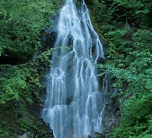 Waterfall iPhone Case by Debbie Stika