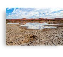 Desert Scene in Namibia Canvas Print