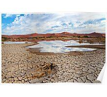 Desert Scene in Namibia Poster