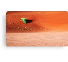 Red sand dunes of Namibia Canvas Print