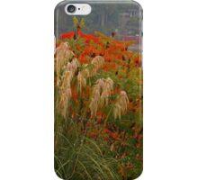 Beauty in abundance iPhone Case/Skin