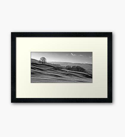 Sleddale 01 - Yorkshire Dales, UK Framed Print