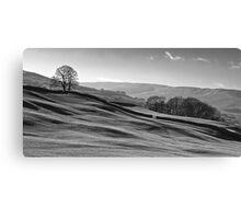 Sleddale 01 - Yorkshire Dales, UK Canvas Print