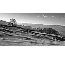 Sleddale 01 - Yorkshire Dales, UK Photographic Print