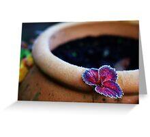 Strawberry leaf Greeting Card