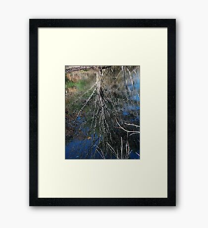 Winter Tree Framed Print