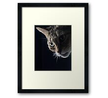 Looking Around Framed Print
