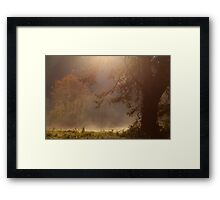 Peaceful Moments Framed Print