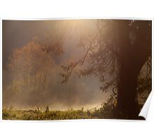 Peaceful Moments Poster