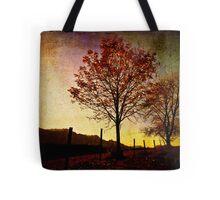 Quiet Autumn Walk ~ Austria, Europe Tote Bag