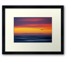 Gliding out to Sea Framed Print