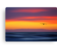Gliding out to Sea Canvas Print