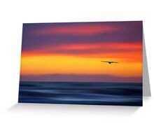 Gliding out to Sea Greeting Card