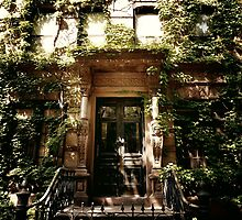Ensconced - East Village - New York City by Vivienne Gucwa