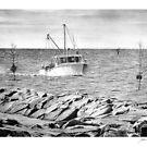 Rock Harbor, Cape Cod, MA by J.D. Bowman