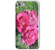 3 Pink Roses-H iPhone Case/Skin