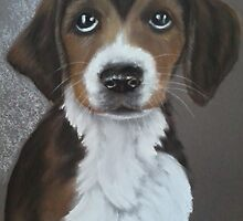 "puppy dog eyes.   20"" 16"" by marie stewart"