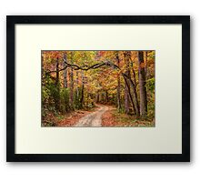Tangled Limbs and Fallen Leaves Framed Print