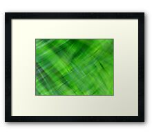 Green on Green Framed Print